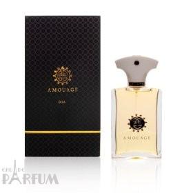 Amouage Dia pour Homme - парфюмированная вода - 100 ml TESTER