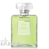 Chanel N19 Poudre