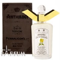 Penhaligons Anthology Eau de Verveine - туалетная вода - 100 ml TESTER