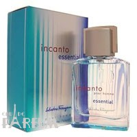 Salvatore Ferragamo Incanto Essential pour Homme - туалетная вода - 100 ml
