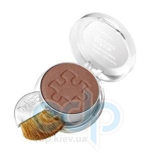 Румяна для лица L'Oreal - Alliance Perfect №240 Золотисто-коричневый - 5 g
