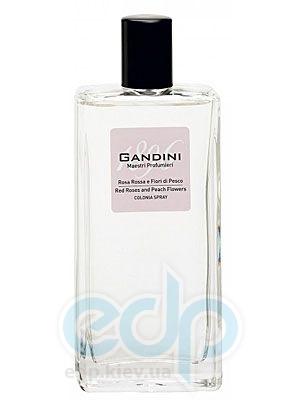 Gandini 1896 Red Rose & Peach Flowers - туалетная вода - 50 ml