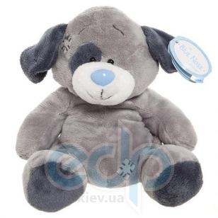 Teddy MTY (мишки) Друзья мишек Teddy Blue Nose -  плюшевая собака 20 см (арт. G73W0027)