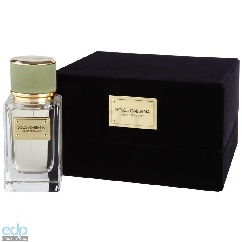 Dolce Gabbana Velvet Bergamot
