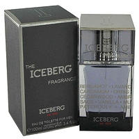 The Iceberg Fragrance for Men - туалетная вода - 100 ml