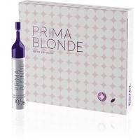 Estel Professional - Набор для окрашивания Prima Blonde Alpha Homme Colorations Set ( 10*10 ml + 60ml + 3*200 ml) (PA/N)