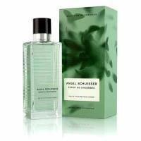 Angel Schlesser Esprit de Gingembre pour Homme - туалетная вода - 100 ml