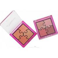 Ninelle пудра компактная Puzzle 4-х цветная № 508 - 5.2 gr (17098)