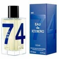 Iceberg Eau de Iceberg 74 Cedar - туалетная вода - 100 ml TESTER