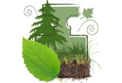 Весна - время свежих зеленых ароматов!