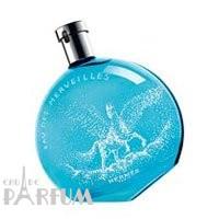 Hermes Eau Des Merveilles Pegasus Limited Edition - туалетная вода - 100 ml TESTER