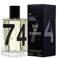 Eau de Iceberg pour Homme - туалетная вода - 100 ml