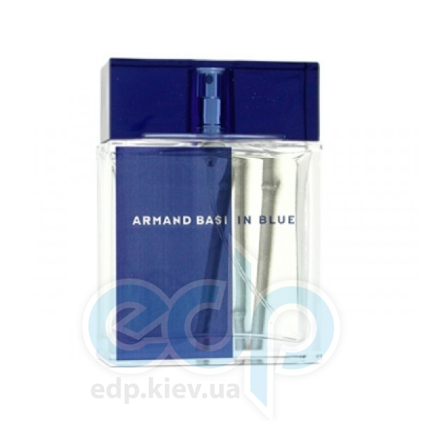 Armand Basi In Blue - туалетная вода - 100 ml TESTER