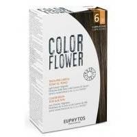 Euphytos - Краска для волос ColorFlower №6/31 Cappuccino - 120 ml